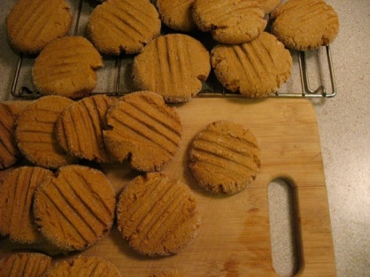 my famous ginger molasses cookies